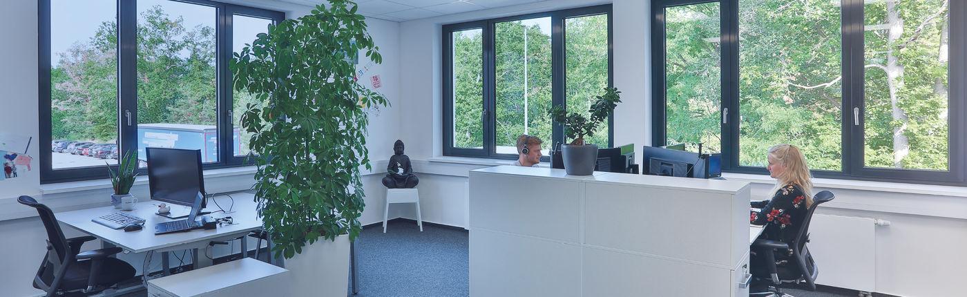 Kaufmännischer Mitarbeiter im Backoffice (m/w/d) - Job Hockenheim - Karriere bei aubex GmbH