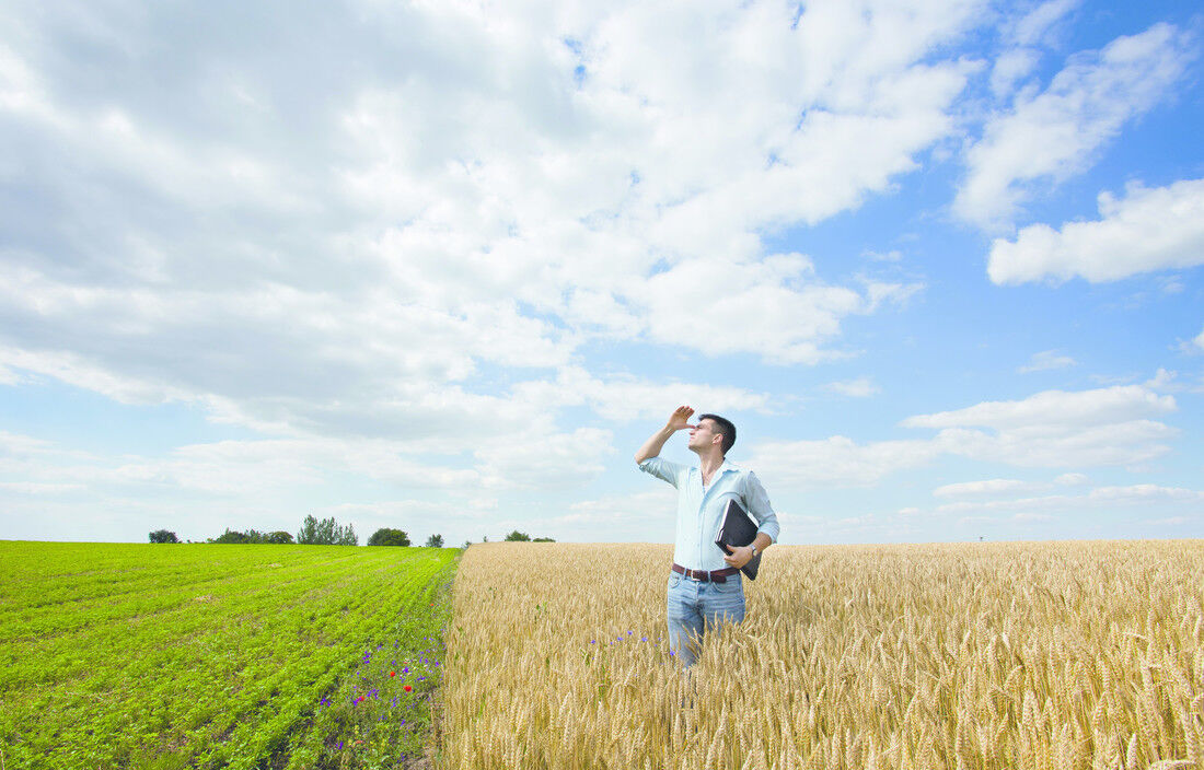Support Specialist (m/w/d) Farm Management Software - Job Berlin - Karriere bei 365FarmNet - Post offer form