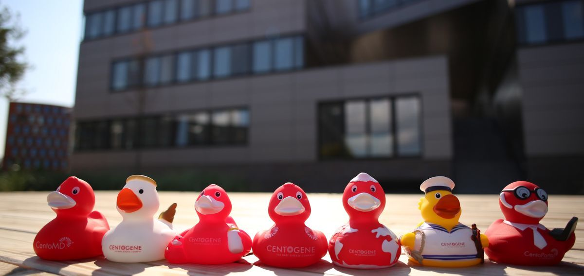 Head Clinical Bioinformatics (m/f/d) - Job Rostock - CentoCareer